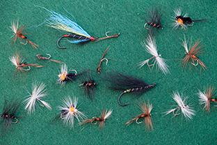 Fliegentom 3 Stück Wooley Bugger schwarz//Krystal